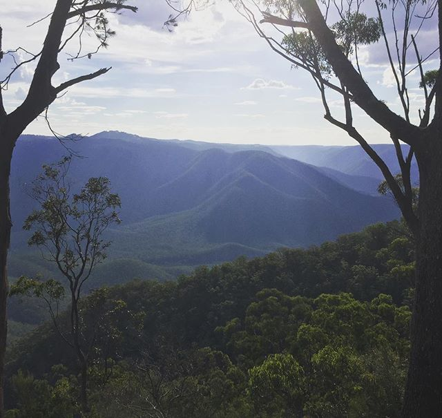 On the edge of the Macleay...